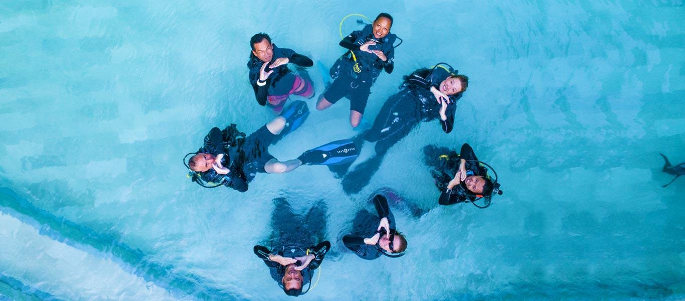 about padi idc asia divers puerto galera
