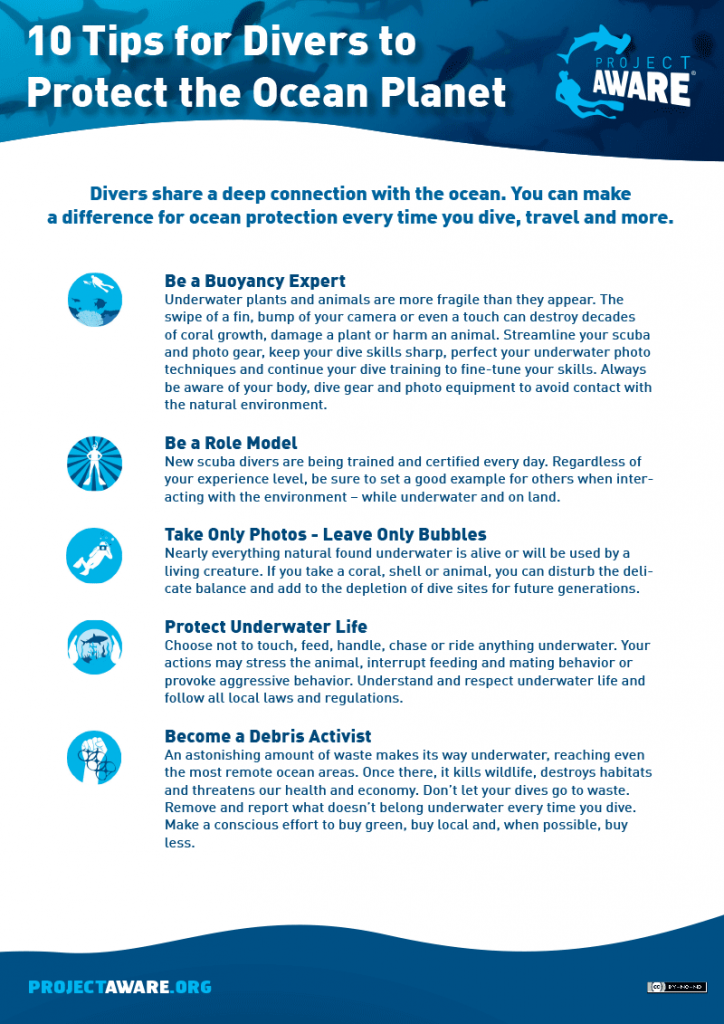 AWARE 10 tips for divers
