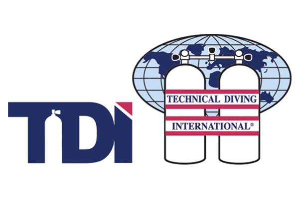 TDI courses