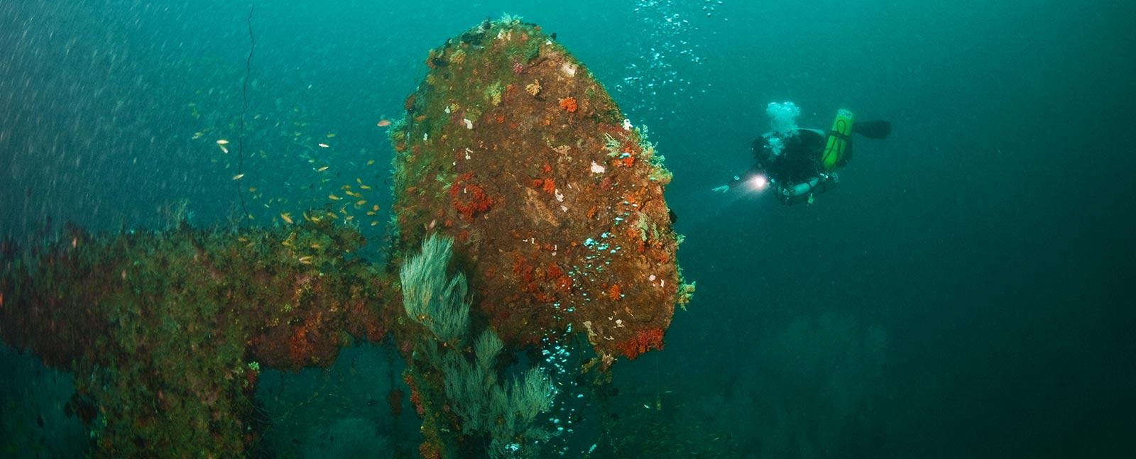 iaintd tech diving courses puerto galera tech asia