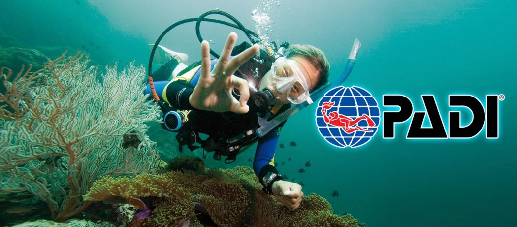 padi peak performance buoyancy course puerto galera philippines