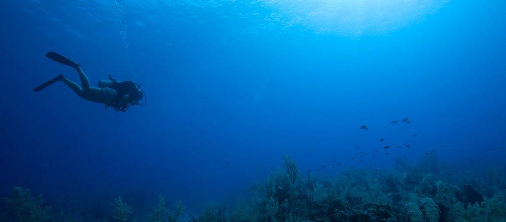 padi scuba diver open water diver upgrade course asia divers puerto galera