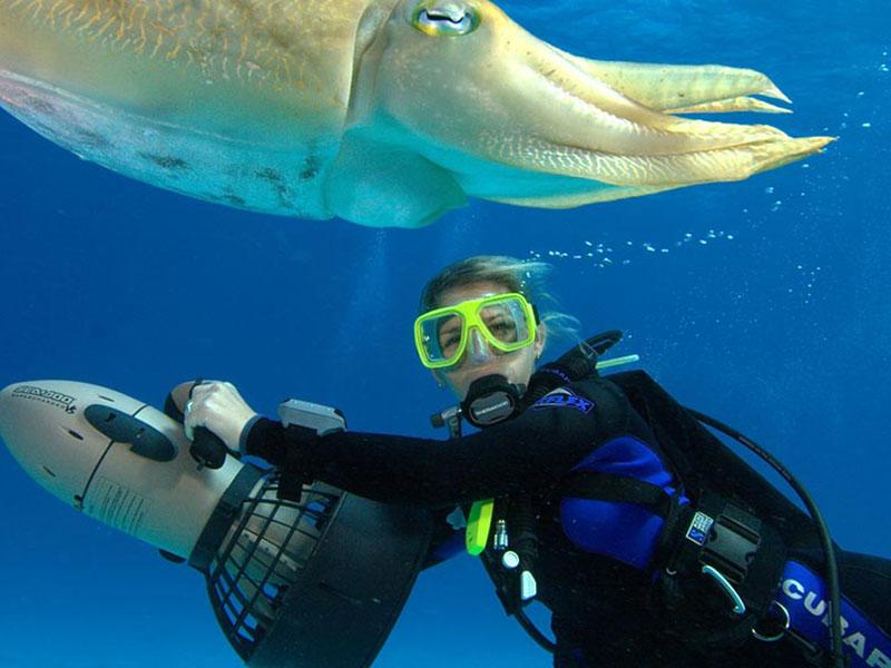 padi specialty scuba courses puerto galera asia divers