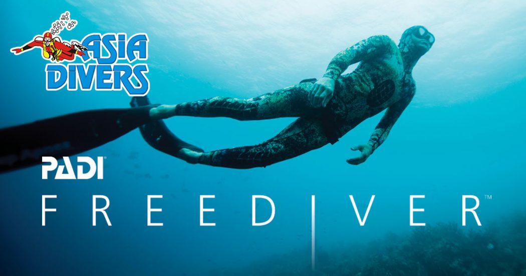 padi freediver course puerto galera philippines asia divers