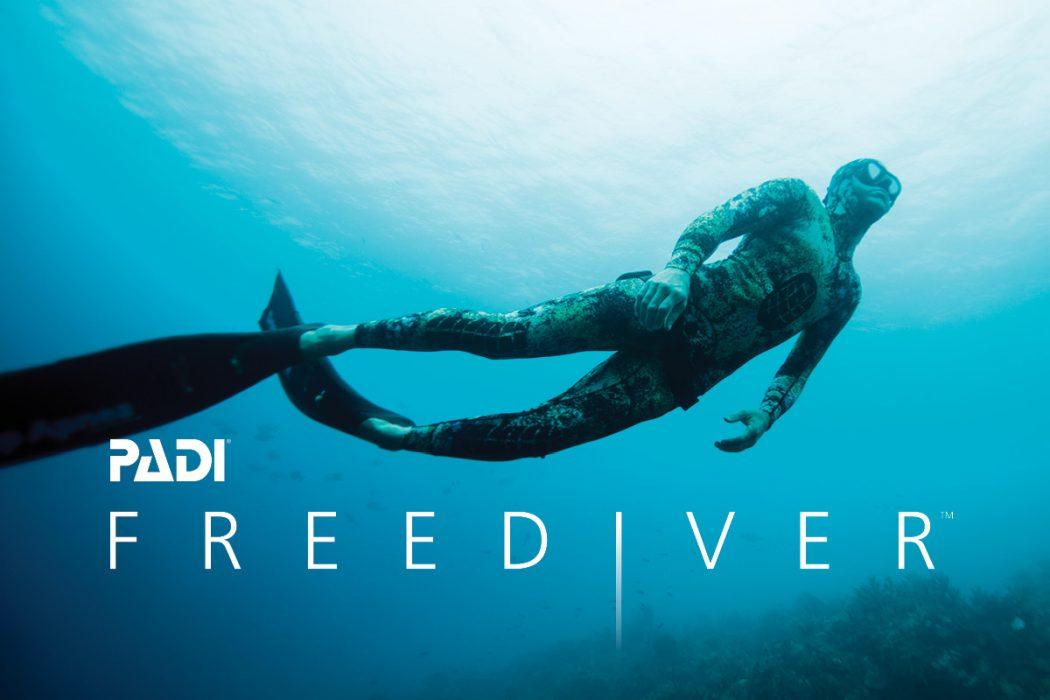 padi freediver puerto galera asia divers