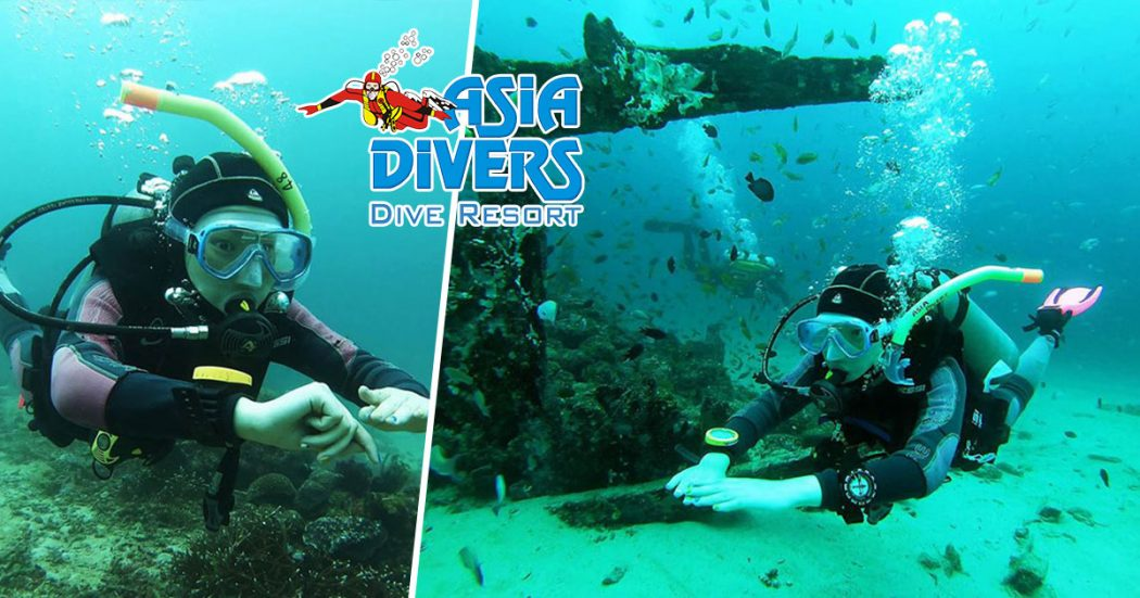 asia divers sabang puerto galera blog Jan 2019