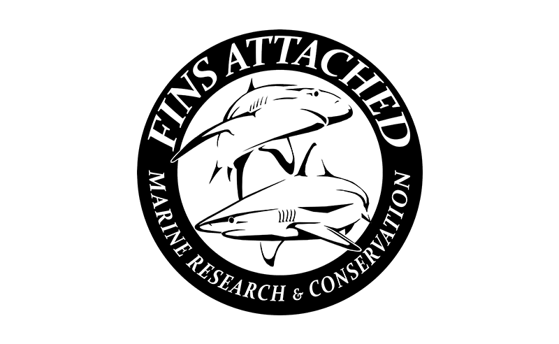 fins attached marine research conservation