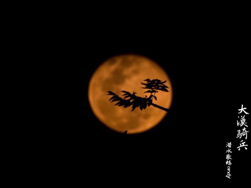 full moon puerto galera
