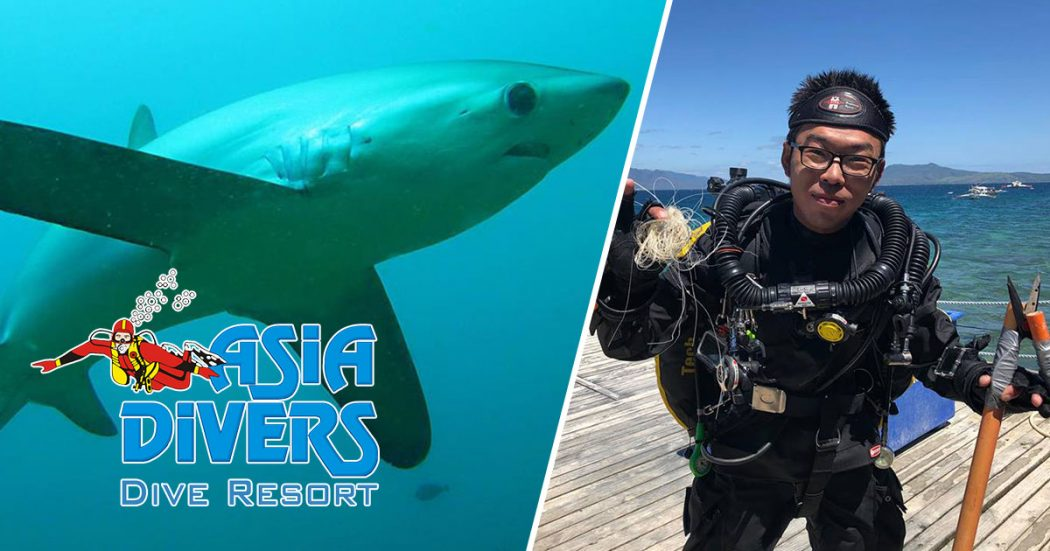 thresher sharks in Puerto Galera Asia Divers
