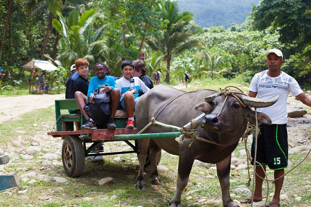 ox cart ride hidden paradise puerto galera philippines