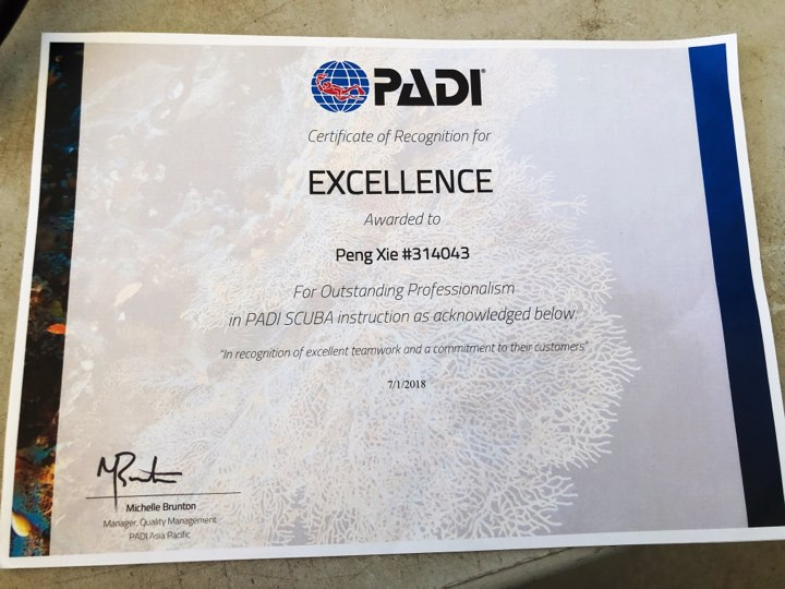 padi certificate of recognition for excellence asia divers