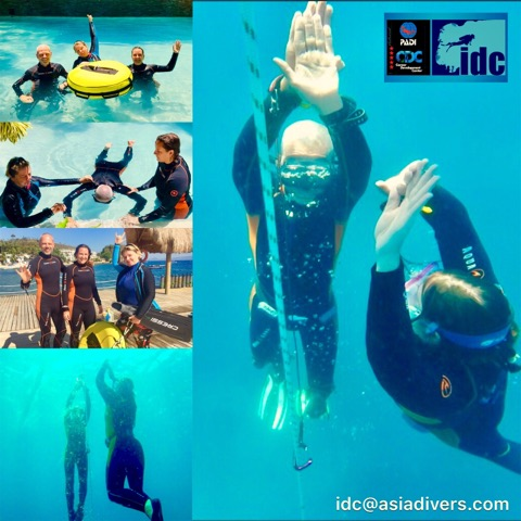 padi freediving courses puerto galera philippines