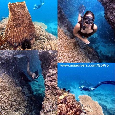 freediving puerto galera philippines asia divers
