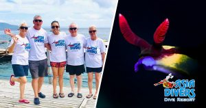 underwater photography workshop 2019 asia divers resort puerto galera