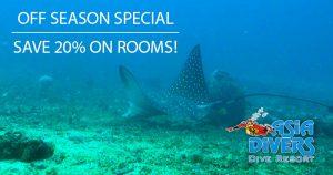 puerto galera dive resort off season special offer el galleon