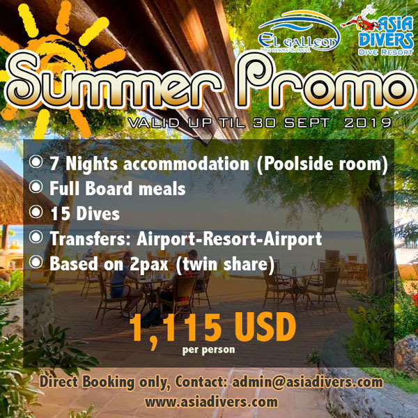 summer holiday promo el galleon dive resort puerto galera